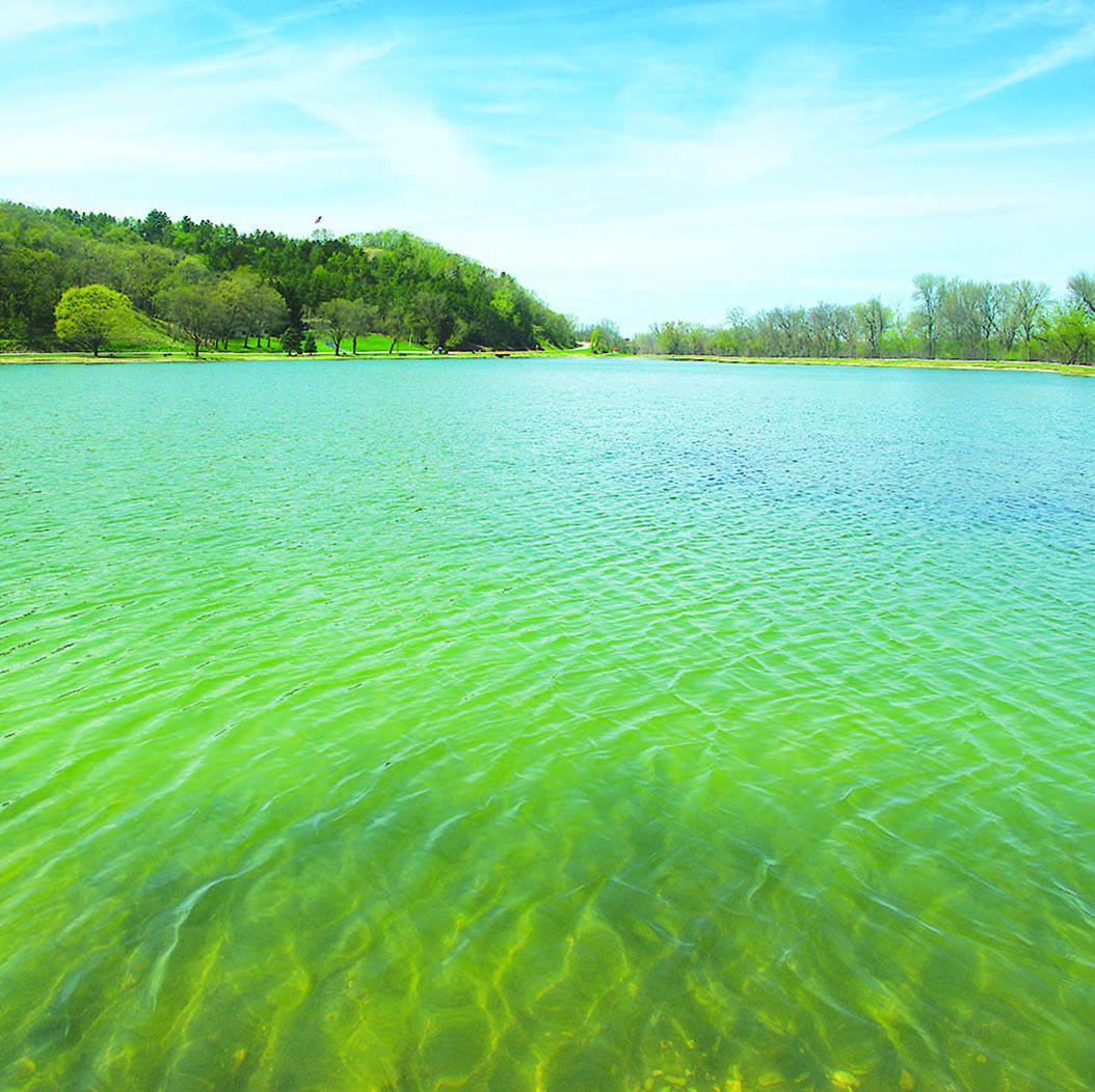 Lake Marion this spring.